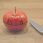 Wie sieht ein Geophysiker eine Tomate?